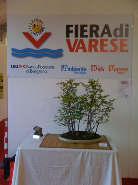 Fiera-Varese-1